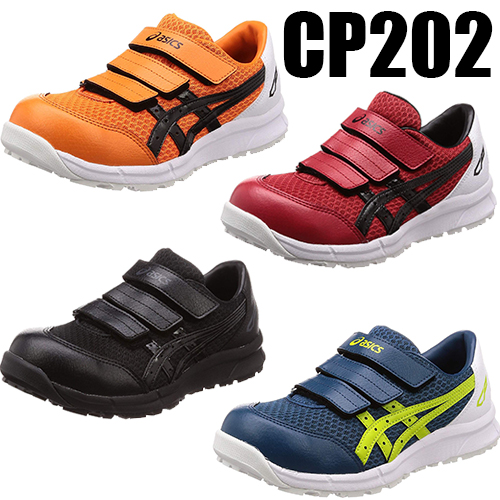 CP202