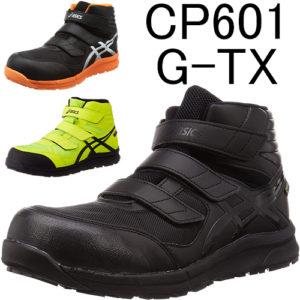 FCP601